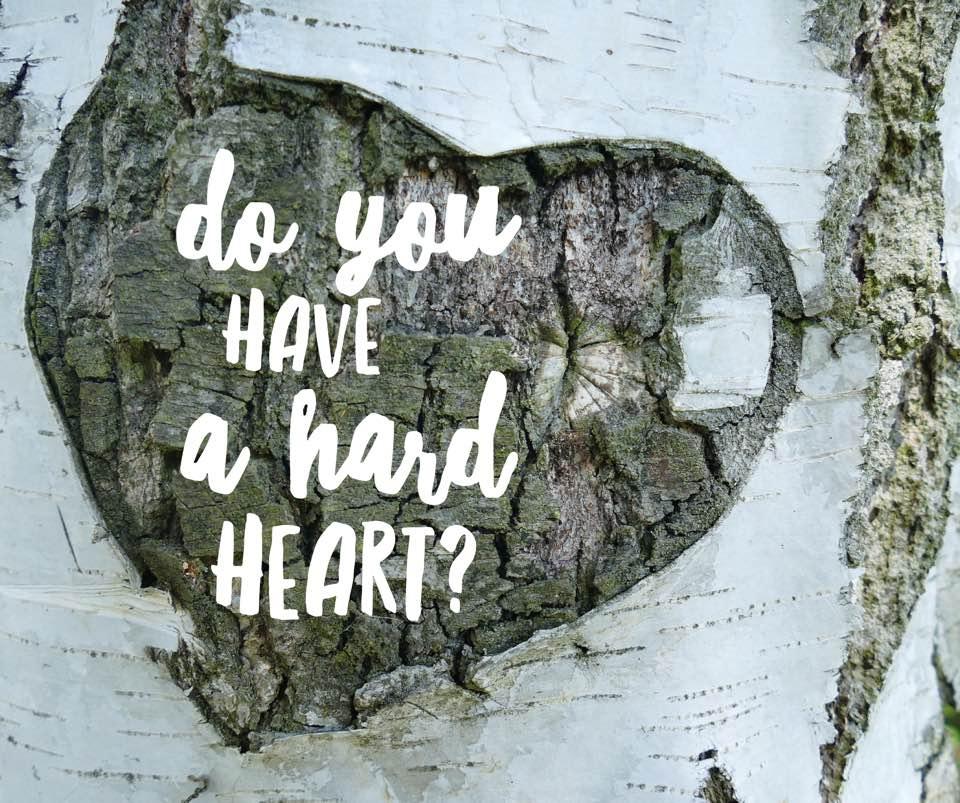 How Do I Soften My Hard Heart? - Elisabeth Klein