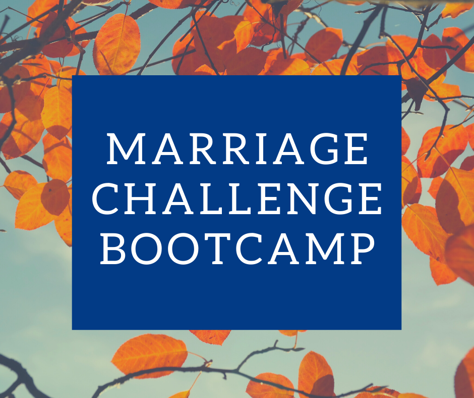 FREE 14-DAY MARRIAGE CHALLENGE